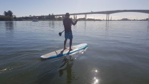 Stand Up Paddleboard With Gateway Bridge In Background